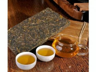 puerh tea brick