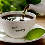 Morning  tea make people spirit quickly