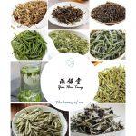Ten Taiwan famous tea with stunning visual taste